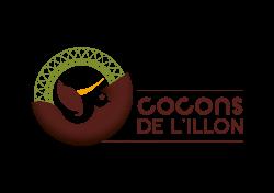 logo CDLI_horizontal_coul
